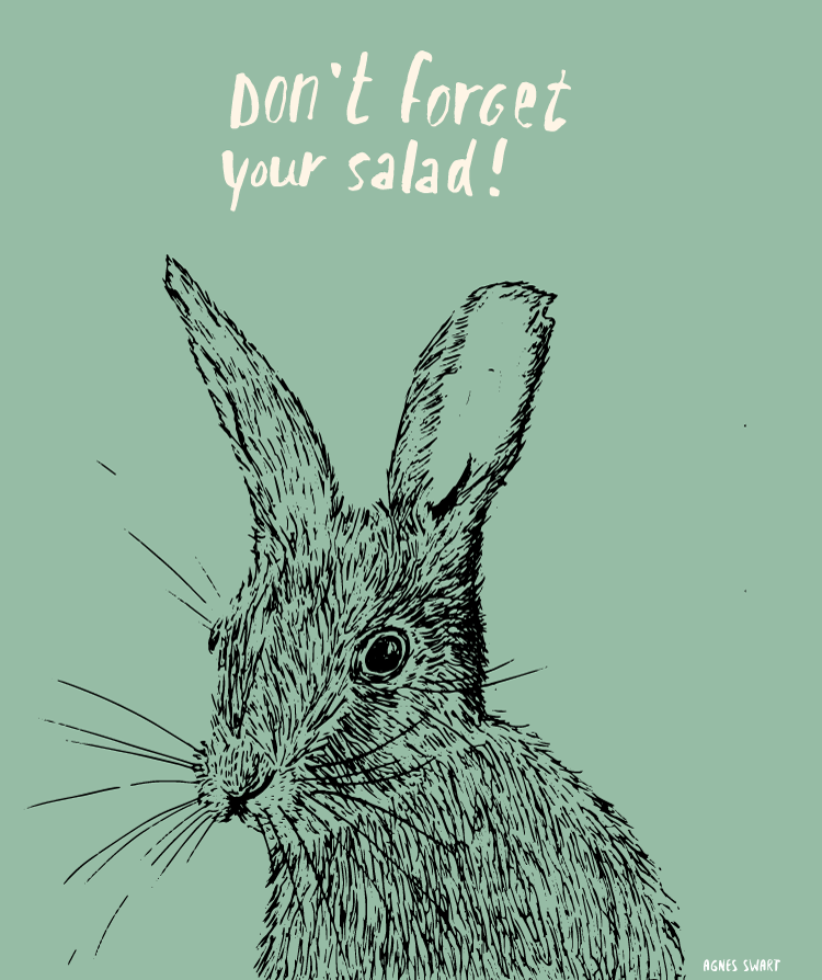 konijnenwijsheid